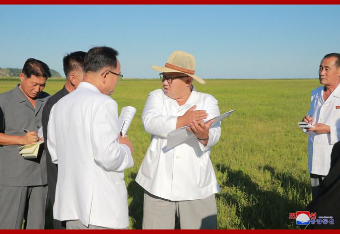 Ким Чен Ын на Онпхоской тепличной ферме 2