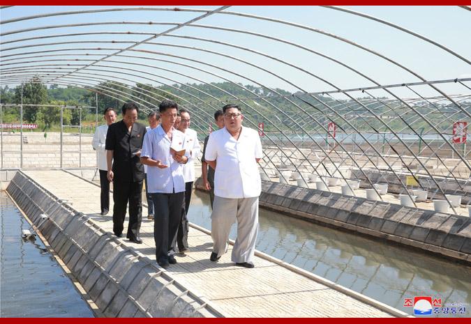 Ким Чен Ын в рыбоводческом хозяйстве 4