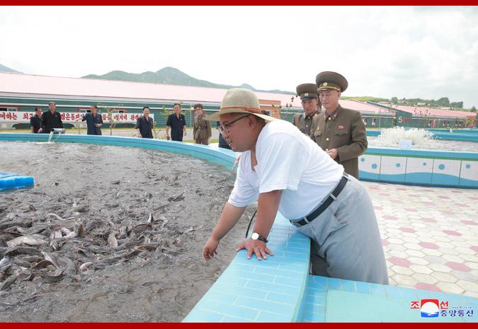 Ким Чен Ын на Самчхонской сомоводческой ферме 2