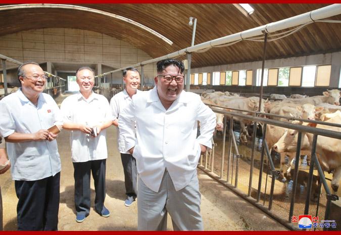 Ким Чен Ын в животноводческом комплексе в районе Унгок 2