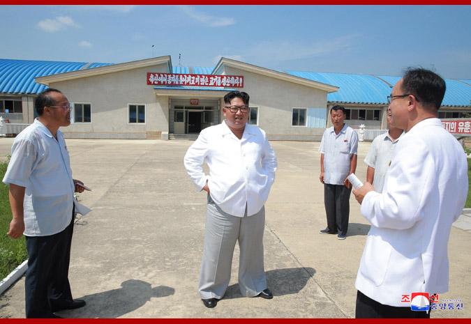 Ким Чен Ын в животноводческом комплексе в районе Унгок 4